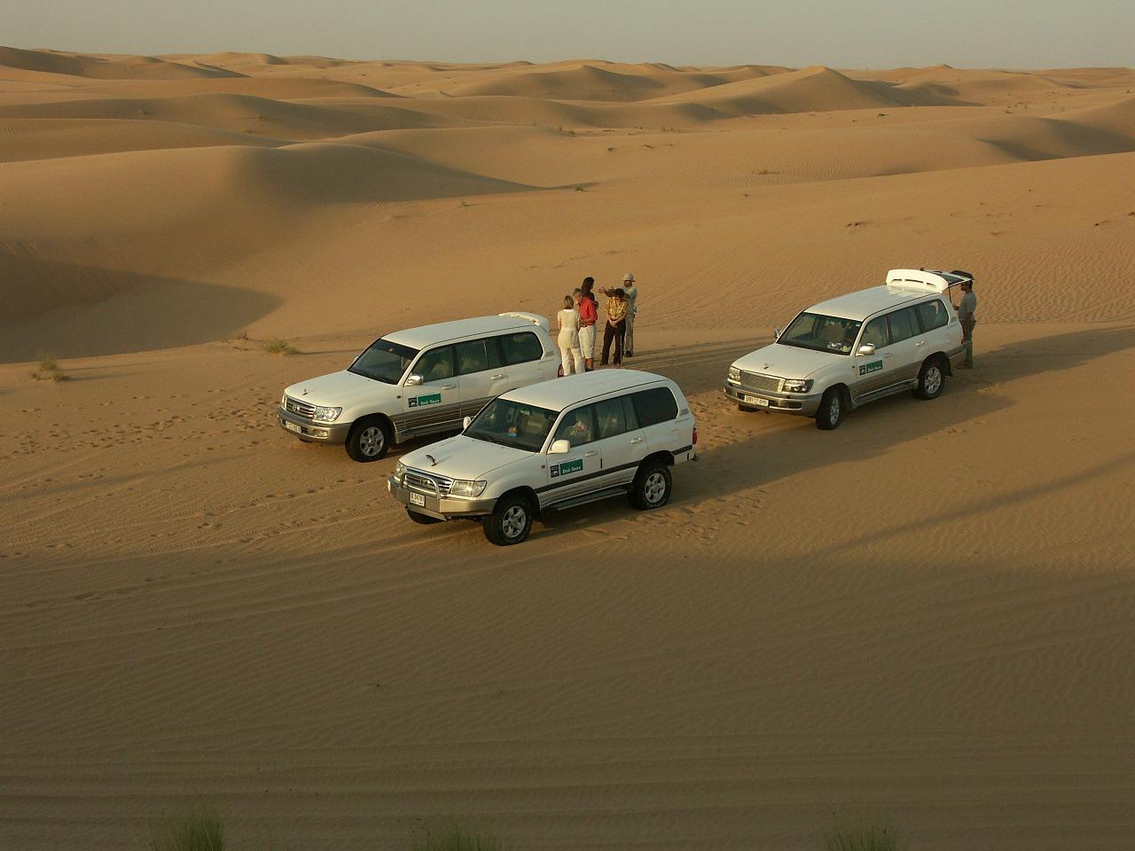 Safari aux Emirats Arabes Unis